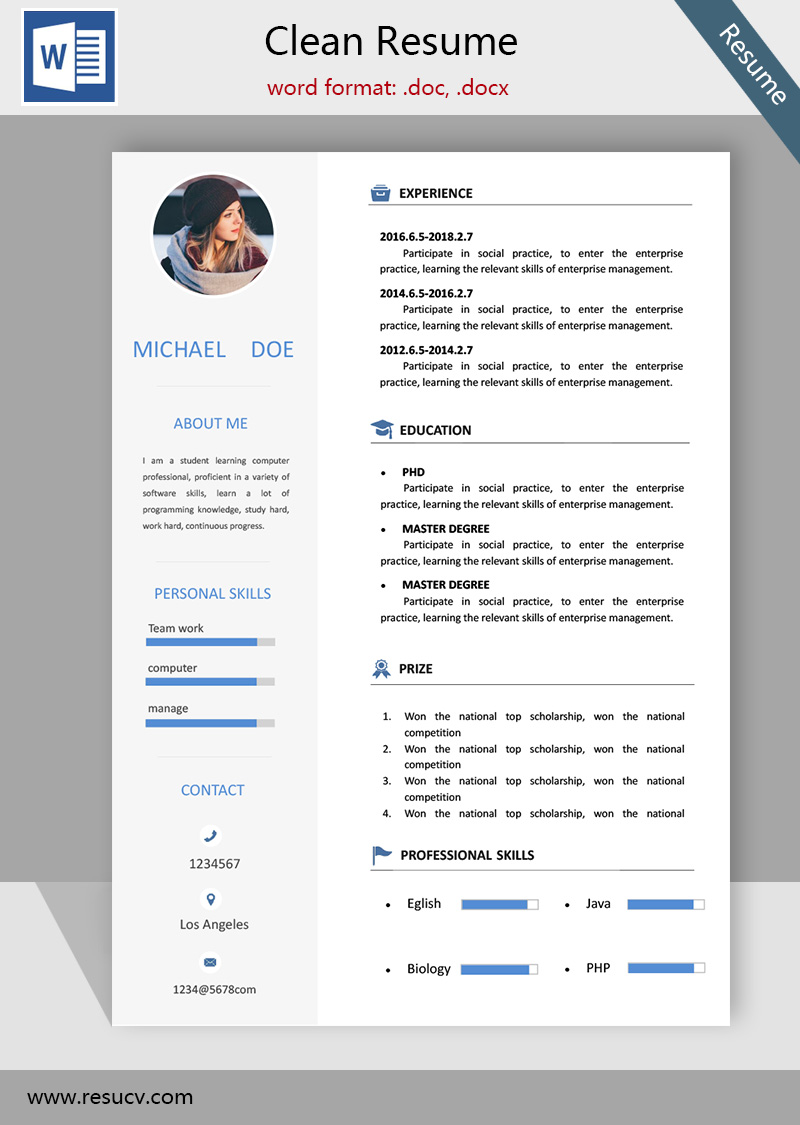 simple clean resume template word format