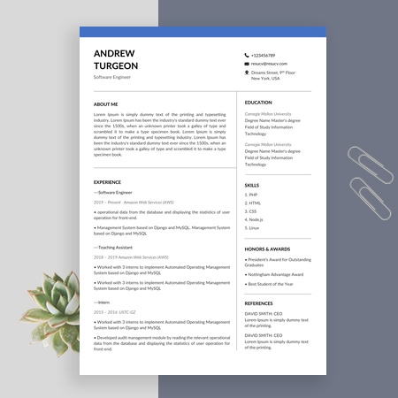 Software engineer resume template and example