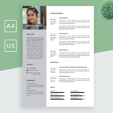 Region Sales Manager Resume Template | Sales Manager Resume Sample | Market Sales Manager Resume Download