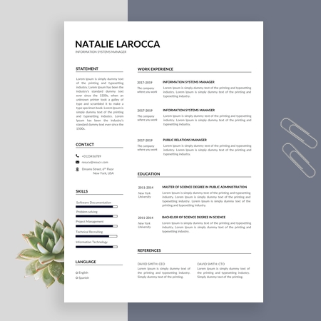Creative Information Systems Manager Resume Template, Simple Resume Format, Resume Template Word
